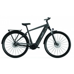 Ebike Das Original City 007+ Diamant /active Plus / Intube 500 Wh / I, Titan Grey - Black - Silver Ma