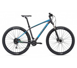 Giant Talon 29er 2020