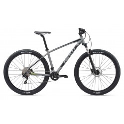 Giant Talon 29er, Gray/green